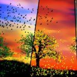 come si effettua analisi armocromatica colori 4 stagioni